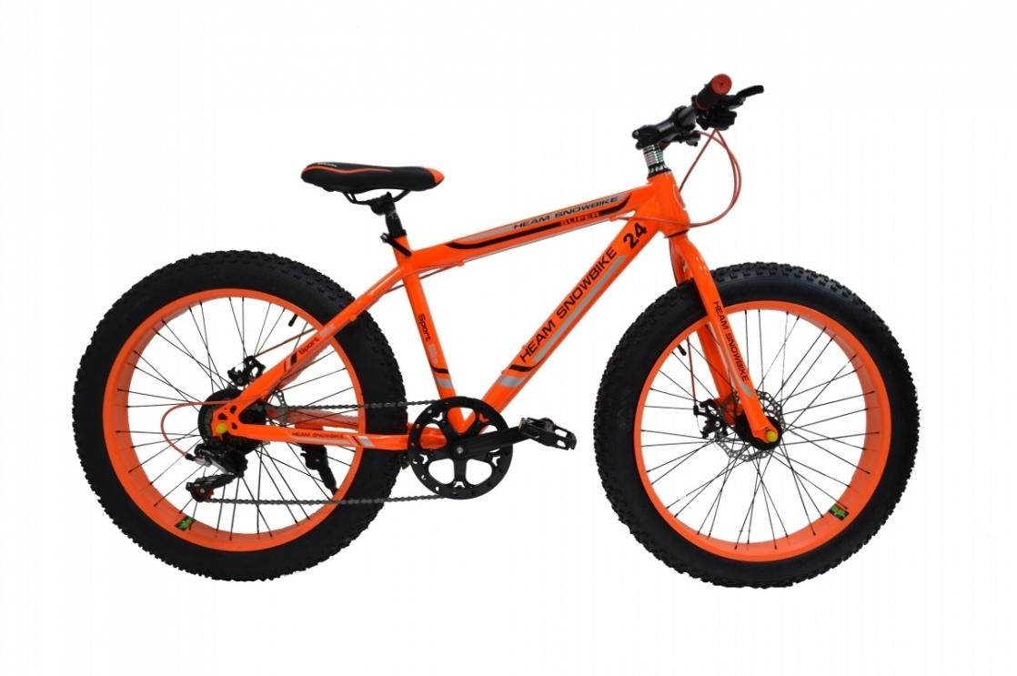 Heam Snowbike 24