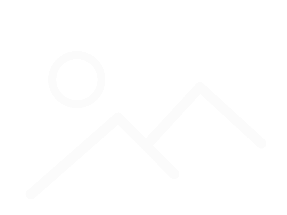 Защита заднего переключателя под эксцентрик, код 90215
